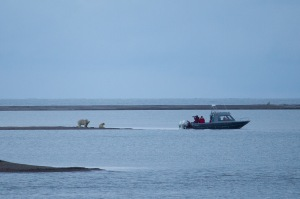 Paul Buzzard - boat and bears