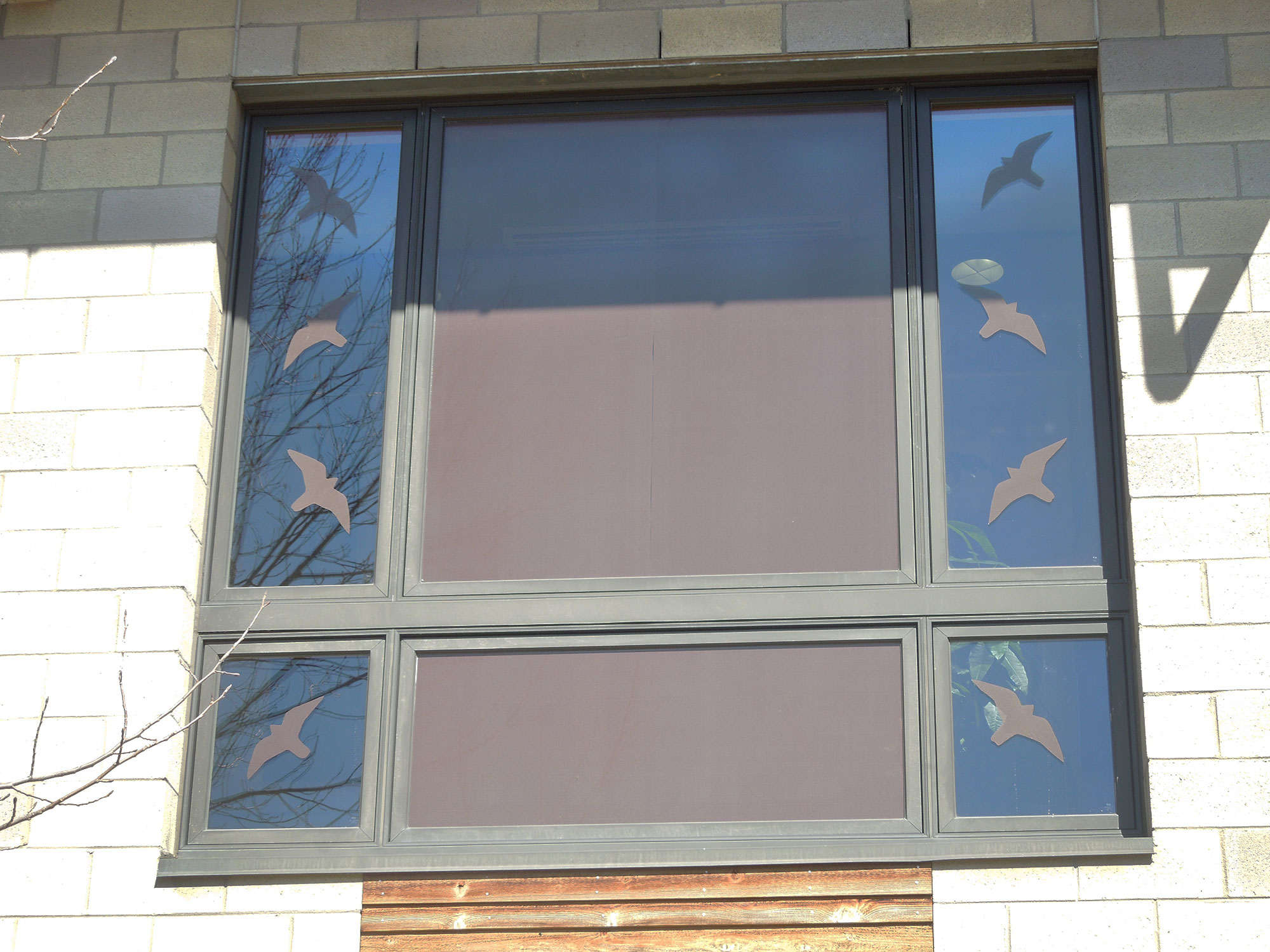 Companies and homeowners can also build bird friendly buildings by incorporating reduced visibility of glass incorporating designs in on glass and